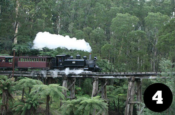 Viator tour on the Puffing Billy train
