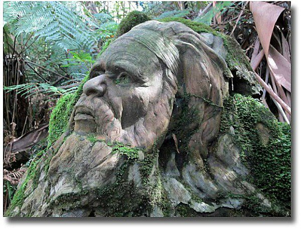 William Ricketts Sanctuary statue compliments of http://www.flickr.com/photos/jupiterfirelyte/7043703545/
