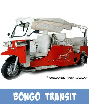 Image link to the site page for the Bongo Transit shuttle