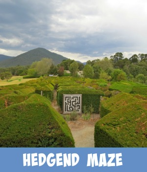 image link to site page on the Hedgend Maze