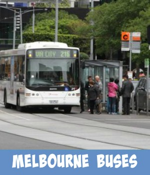 Melbourne Bus page link graphic