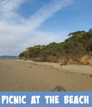 Image link to site page on picnic on the beach