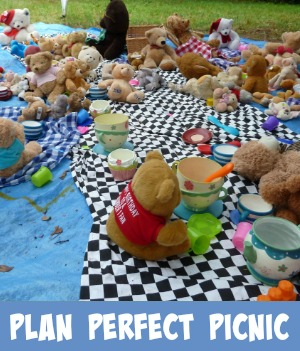 teddies on a picnic