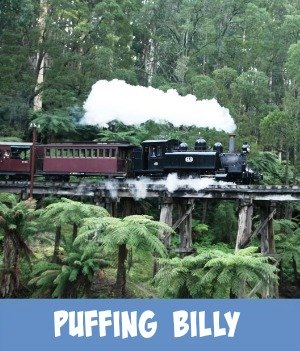Image link to site page on the Puffing Billy Train