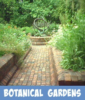 image link to site page on Melbourne Royal Botanical Gardens