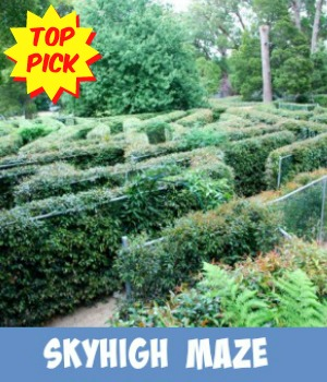 image link to site page on the Skyhigh Maze