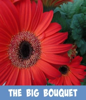 thumbnail image link to site page on the Big Bouquet