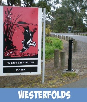 Image link to Site Page on Westerfolds Park alongside the Yarra River