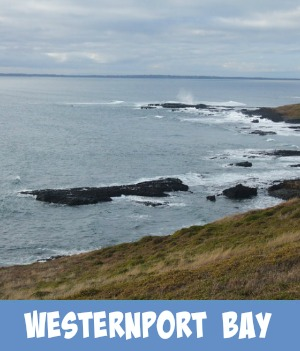 thumbnail image to the site page on beaches of western port bay