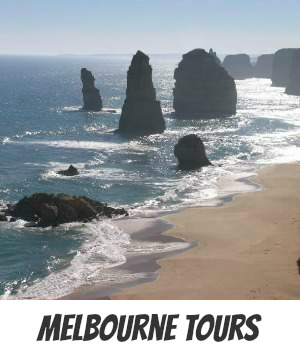 Image links to the site page on reviews of top Melbourne tours