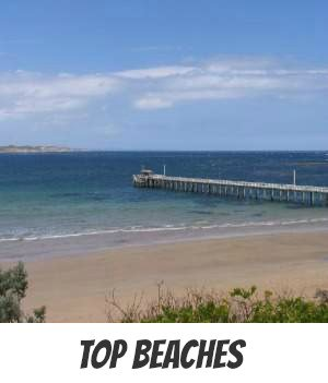 Image link to Site page on Melbourne's beaches