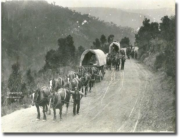 temsters arrive at Walhalla circa 1900's