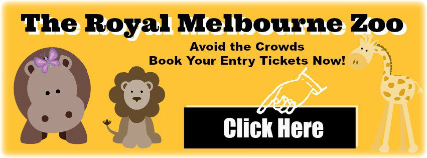 Book the Zoo Tour Banner