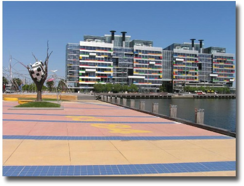 Cow up a tree - Central Docklands, Melbourne Australia compliments of my Mate Steve Curle