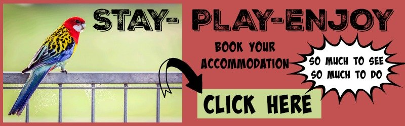 stay-play-enjoy banner link