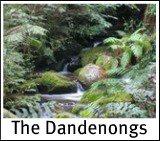 Graphic link to site page on The Dandenongs
