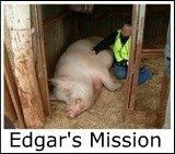 Thumbnail link to the Site's page on Edgar's Mission