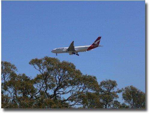 Plane landing over Woodlands Historic Park Melbourne Australia compliments of http://www.flickr.com/photos/flying_cloud/2208223111/