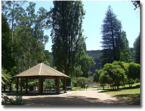 Picnic Area at the Maroondah Reservoir in Melbourne Australia compliments of http://www.flickr.com/photos/avlxyz/2166905547/