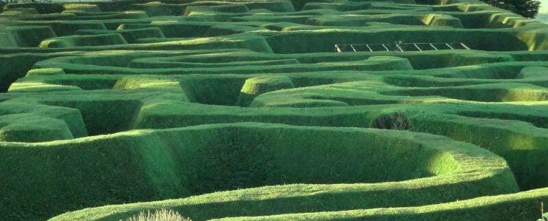 Maze House hedge maze in Daylesford