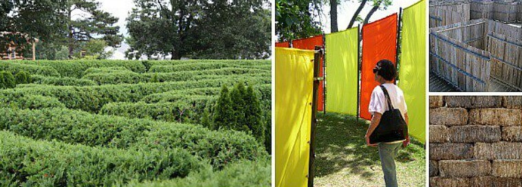image link to site page on hedgend maze