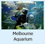 Aquarium Site Page Link