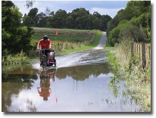 Summer flooding Jells Park, Melbourne, Australia compliments of Steve Curle