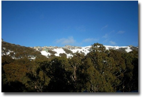 Snow on Mt Buller compliments of http://www.flickr.com/photos/waikin/875821914/