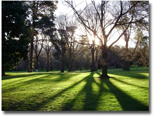 Winter shadows in Fitzroy Gardens melbourne Australia compliments of http://www.flickr.com/photos/9028461@N07/2697589953/