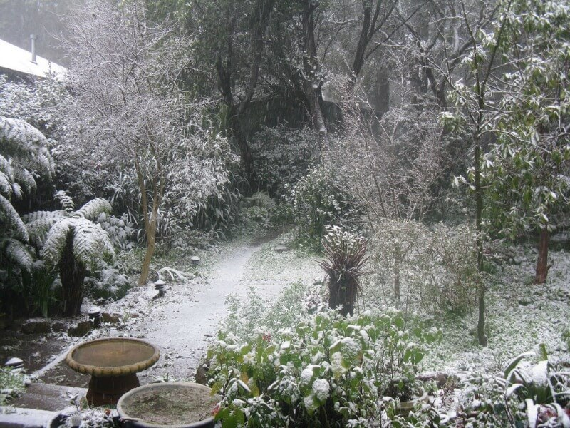 Snow falls in the Dandenong mountains compliments of https://flic.kr/p/5bZesE
