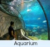 The Melbourne Oceanic Aquarium