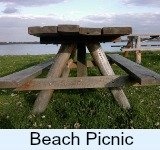 Beach picnic link
