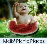 picnic places link