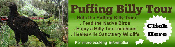 Banner image for Puffing Billy Tour Booking link
