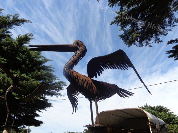 Queenscliff Market iron sculptured pelican