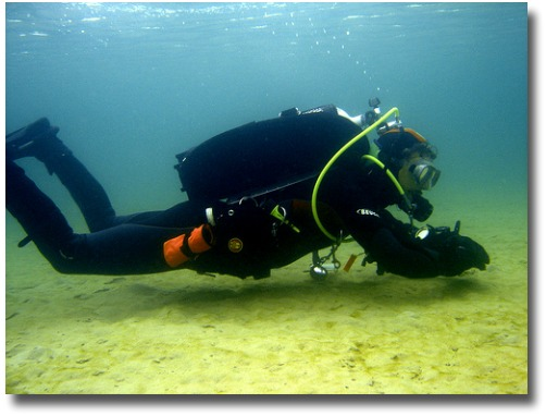 Scuba diving at Indented head Port Phillip Bay Victoria Australia compliments of http://www.flickr.com/photos/saspotato/4280904467/