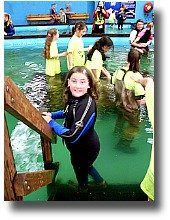 Swimming with sharks and stingrays at the Australian Shark and Stingray Centre