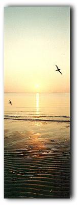 Sunrise over Redcliff Beach 2000