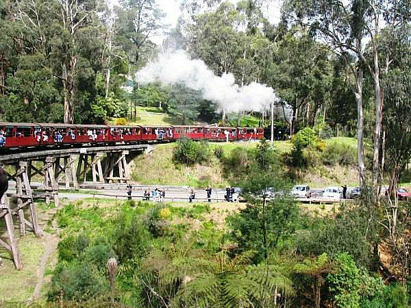 The trestle bridge at Menzies creek with Puffing Billy Steamtrain