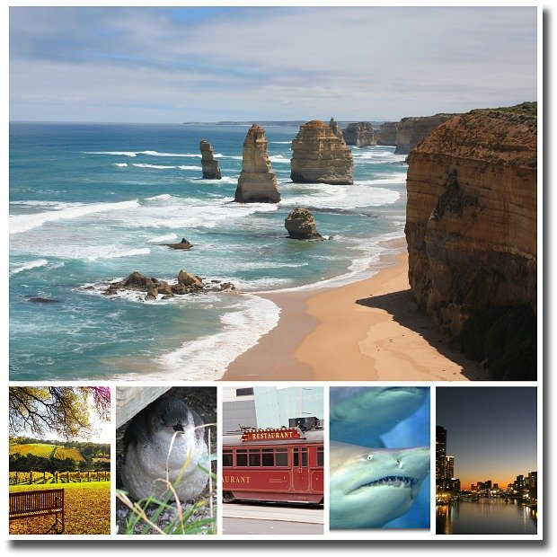selection of Melbourne Day Tours offered by Viator